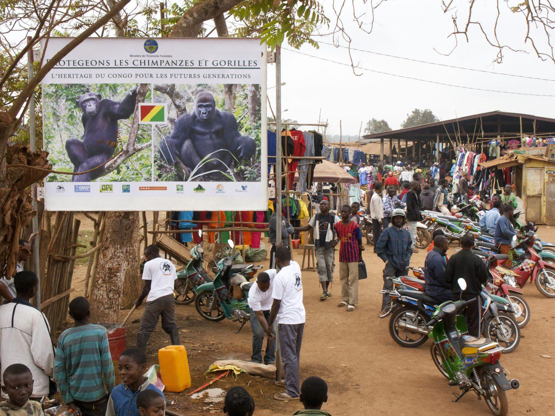 Billboard Campaigns
