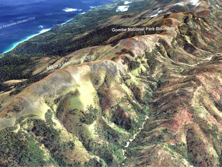 Earth Observation & Remote Sensing